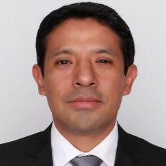Enrique Llanos V.