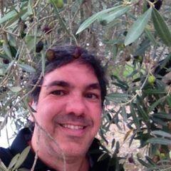 Alessandro N.