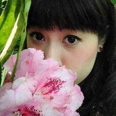 Zheng N.