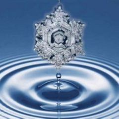 Water For Life Wellness C.