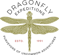 Dragonfly Expeditionary C.