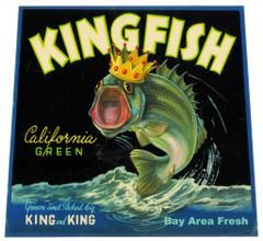 kingfish