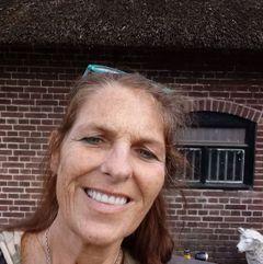 Kathy Harrison M.