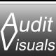 Audit V.