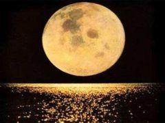 Lua C.