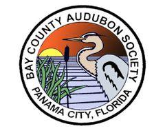 Bay County Audubon S.