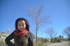 Qin L.