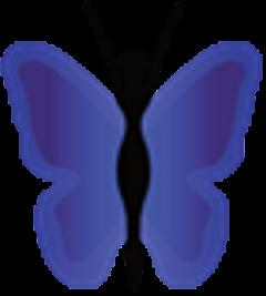 Blue Butterfly W.
