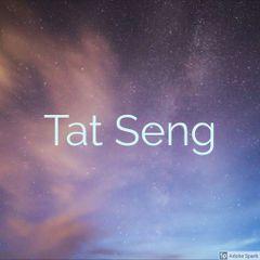 Tan Tat S.