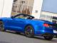 Mustang C.