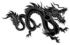 Dragon Property P.