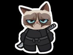 Ninja Grumpy C.