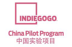 Indiegogo China Pilot P.