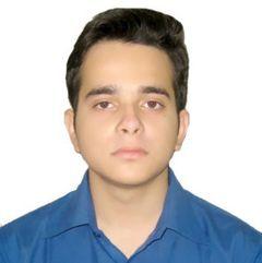 Abhigyan D.