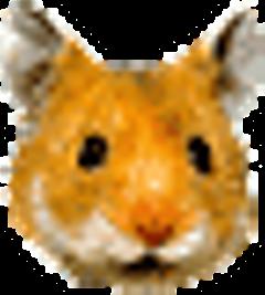 gnuzoo