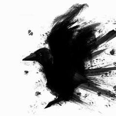 Crow X.