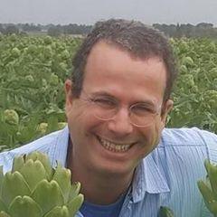 Tamir B.