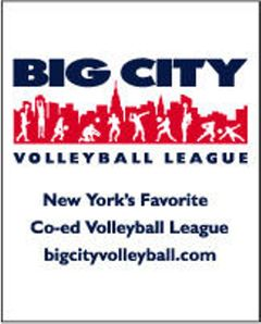 Big City Volleyball L.