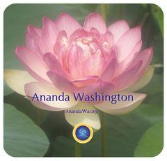 Ananda W.