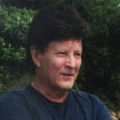 Dino C.