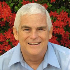 Roy P.
