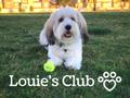 Louie's Club