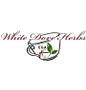 White Dove Herbs