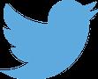 Twitter Dev Brasil