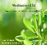 Meditation 101 Guided Relaxation CD