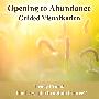Opening to Abundance Visualisation