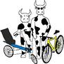 Bike Barn Cycles