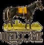 Happy Trails Horse Club